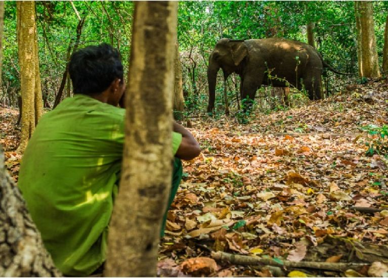 Vietnam's First Ethical Elephant Experience